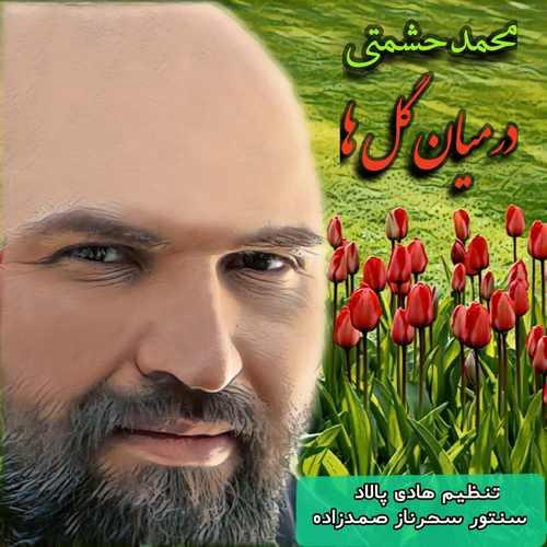 دانلود موزیک جدید محمد حشمتی در میان گلها