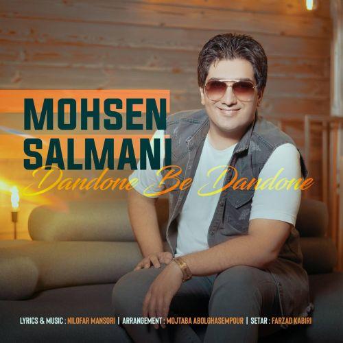 دانلود موزیک جدید محسن سلمانی دندونه به دندونه